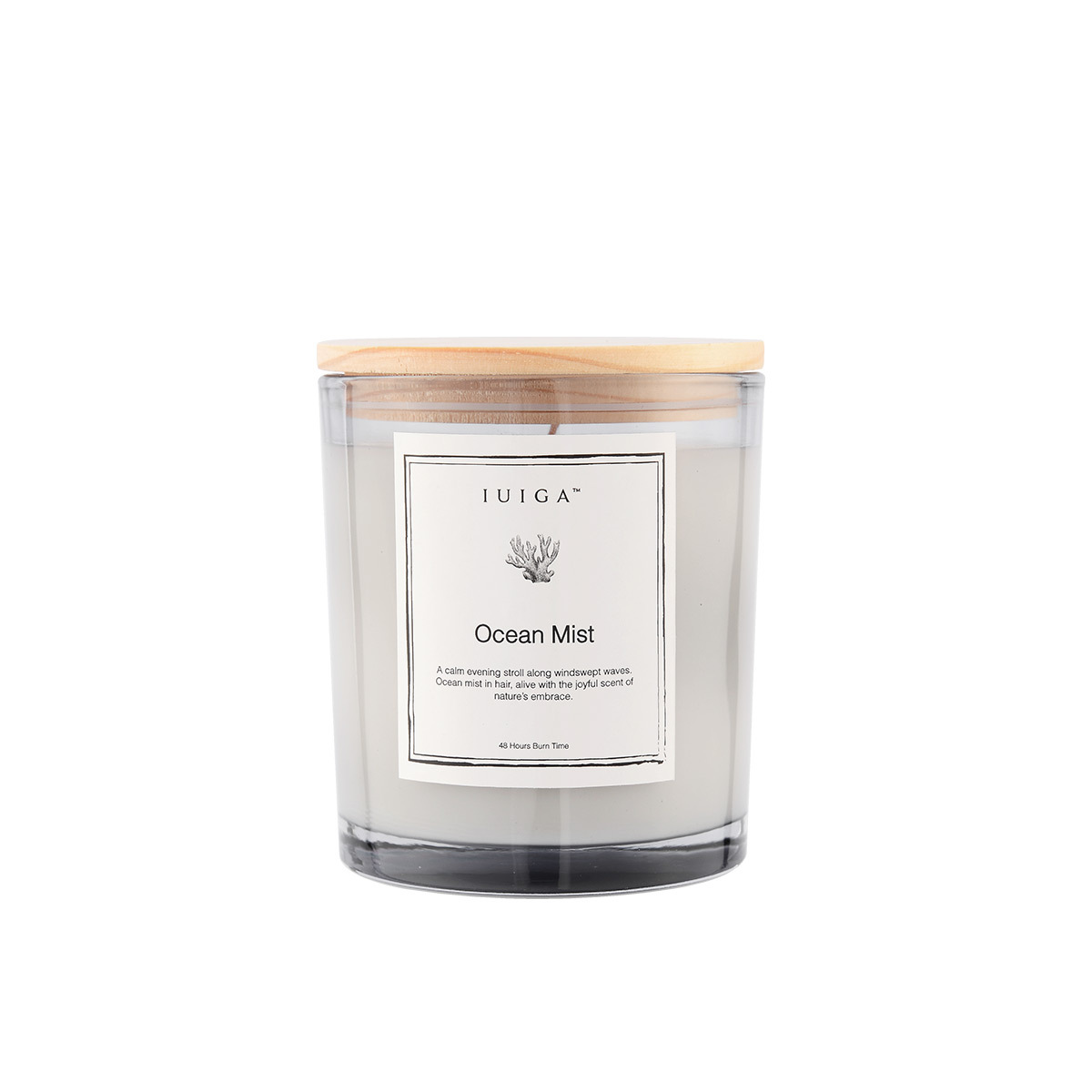 Ocean Mist Soy Wax Candle